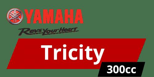 tricity 300
